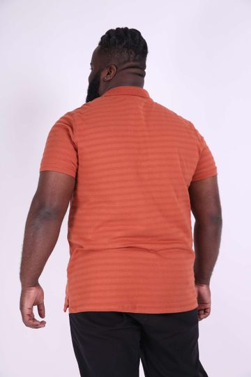 POLO--PLUS-SIZE_0010_3