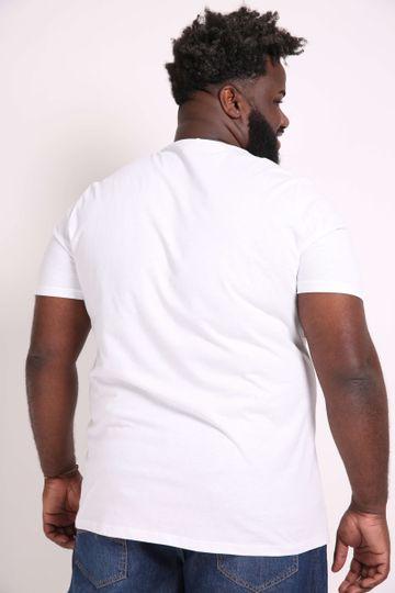 Camiseta-Estampa-Tropical-Plus-Size_0009_3