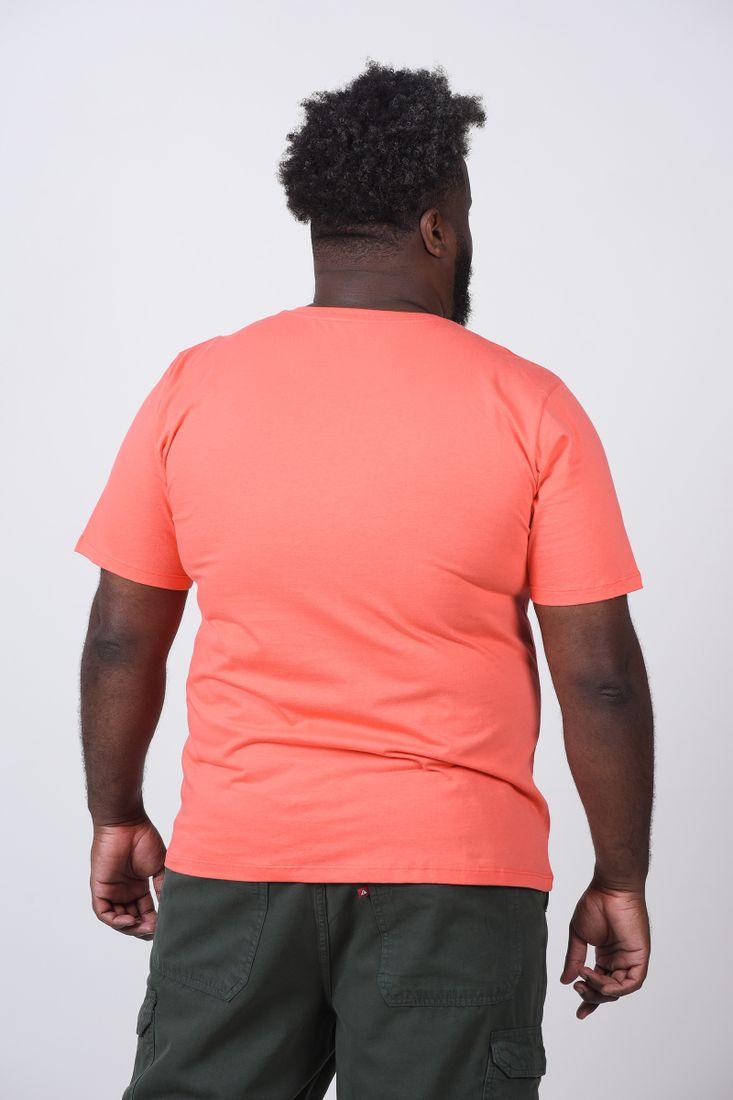 Camiseta-Estampa-California-Plus-Size_0049_3